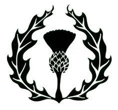 Image result for thistle vector graphic