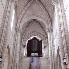 My town in the heart of the castel of the Loire and the zoo of Beauval France. Ma ville en plein coeur des châteaux de la Loire et du zoo de Beauval France. #mytown #town #castle #loirecastle #beauvalzoo #Valleyofthecher #france #maville #ville #valleeducher #chateaudelaloire #chateau #instaday #instagood #instahollidays #hollidays #vacances