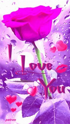 I love you Love Heart Images, I Love You Pictures, Love You Gif, Beautiful Love Pictures, Beautiful Gif, Beautiful Flowers Wallpapers, Beautiful Rose Flowers, Love Rose, I Love You Animation