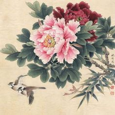 Peony painting Source by Oriental Flowers, Chinese Flowers, Japanese Flowers, Japanese Art, Japan Painting, China Painting, Oil Painting Flowers, Watercolor Flowers, Art Floral