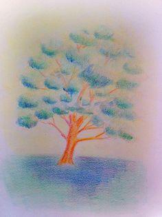 Waldorf ~ 5th grade ~ Botany ~ Oak ~ main lesson book