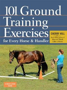 Ground training is the key to safe, successful riding and a strong bond between horse and rider. In 101 Ground Training Exercises for Every Horse & Handler, Horse Training Tips, Horse Tips, My Horse, Horse Riding, Riding Gear, Horse Exercises, Training Exercises, Horse Information, Horse Books