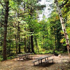 Cozy Campsite  -Arrowhead Provincial Park  Ontario Canada