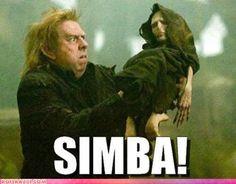 Harry Potter funnies