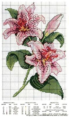 This post was discovered by Shirin Jahan. Discover (and save!) your own Posts on Unirazi. Cross Stitch Charts, Cross Stitch Designs, Cross Stitch Patterns, Flower Patterns, Beading Patterns, Embroidery Patterns, Cross Stitching, Cross Stitch Embroidery, Hand Embroidery