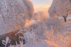 зимний рассвет.. - egordeev - ЛенсАрт.ру