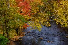 Landscapes - Jim Zuckerman Photography