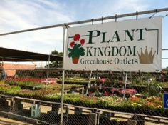 Don't miss this!  Plant Kingdom Greenhouse Outlets - Get $30 worth of Plants and Flowers for $15 from Plant Kingdom!