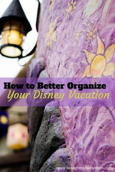 Organizing a Disney vacation can be daunting with making meal plans, email organization and getting it all together. Here are some tips to help!
