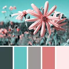 Summer Color Palettes, Color Schemes Colour Palettes, Colour Pallette, Bedroom Color Schemes, Summer Colors, Bedroom Colors, Grey Palette, Design Bedroom, Best Colour Combinations