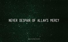 Because Allah provides...