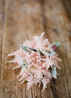 El Astilbe es una de las plantas de floración más elegantes que se produce a finales de verano.