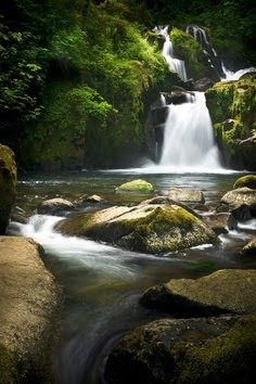 Sweet Creek falls, Oregon.