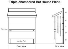 bat house-what color to paint your bat house | my big girl fairy