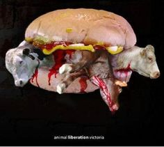 what's in your burger? why #vegan