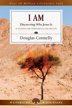 I Am: Discovering Who Jesus Is (Lifeguide Bible Studies) by Douglas Connelly --to accompany Wiersbe's book