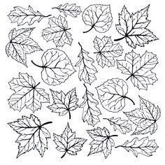 Fusible decals stay black post-fire, producing beautiful results in exquisite detail. Fall Leaves Tattoo, Autumn Leaves, Water Drawing, Quilling Patterns, Autumn Art, Printable Designs, Leaf Art, Free Motion Quilting, Autumn Inspiration