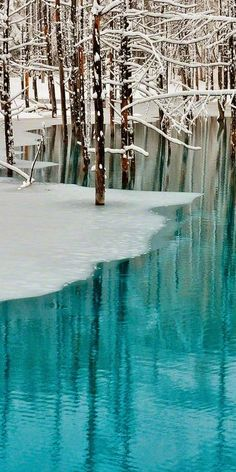 Beautiful Aqua White Winter
