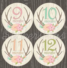 SALE Baby Month Stickers Monthly Stickers Baby by StickersPlus