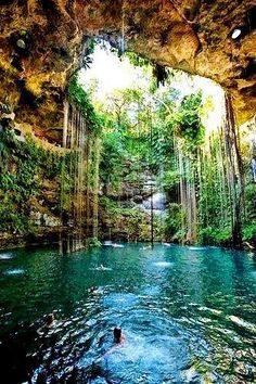 Xcaret Park Cancun Mexico - Friends, today we swim with dolphins in the turquoise waters of the Caribbean Sea, we smell the orchids, while the Yucatan parrots will sit on our shoulders... we will taste quesadillas and then steps will take us to other wonders of this paradise park.... http://tripelonia.com/headline/xcaret-park-cancun-mexico/176