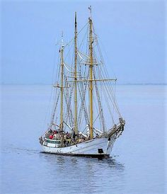 "Polish tall ship ""Zawisza Czarny"" approaching Helsingør."