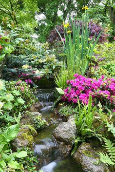 "https://flic.kr/p/cbuyBy   Cascade at head of garden stream in late spring   English garden for all seasons. 2010 winner ""Overall Gardener of the Year"" Garden News national garden competition. 2007 winner Daily Mail National Garden Competition. <a href=""http://www.fourseasonsgarden.co.uk"" rel=""nofollow"">www.fourseasonsgarden.co.uk</a>"