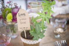DIY Handmade Wedding Favour | Tree Sapling     www.WeddingGirl.ca