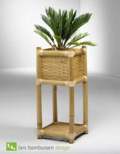 Cachepô de bambu.