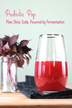 Probiotic Plum Shiso