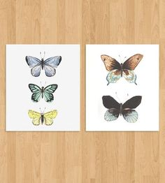 Butterfly Collection Art Print Set