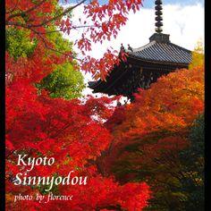 Shinnyodou