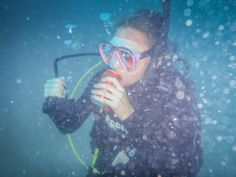 Diving Koh Tao: How is it to live as a dive instructor in Thailand? Premier Pools, Best Scuba Diving, Koh Tao, Open Water, Bar Set, Best Player, Beautiful Islands, Marine Life, Bangkok