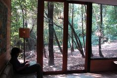 Forest House Design in Beautiful Forest at La Reina, Santiago: Apollo 11 - Home Design and Home Interior Tiny House, Passive Design, Box Houses, Beautiful Forest, Forest House, Japanese Architecture, Green Building, Apollo, House Design