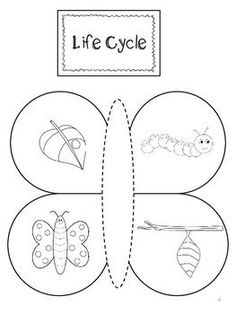 Butterfly Interactive Lapbook – Life Cycle, Counting, Colors Source by Graphing Activities, Preschool Crafts, Preschool Activities, Bee Life Cycle, Life Cycle Craft, Stages Of A Butterfly, Butterfly Life Cycle, Butterfly Crafts, Butterfly Colors