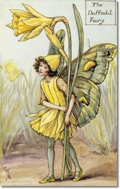 I love this woman's art! ...Cicely Mary Barker - Flower Fairies of the Spring - The Daffodil Fairy Archival Fine Art Paper Print