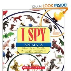 I Spy Animals: great summer reading after zoo trips!