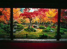 Japan | Gardens of Japan Tour, Autumn 2013, Japan Journeys specialist holiday
