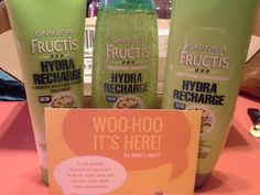 Mary's Craft Nook: Bzzagent Campaign: Garnier Fructis Hydra Recharge Product Line