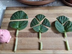 Begonia, Bamboo Cutting Board, Diy And Crafts, Canning, Garden, Flowers, Design, Youtube, Christmas Decor