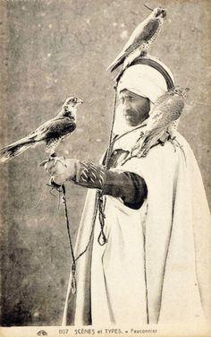 old school falconry
