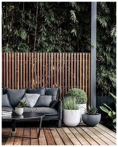 I love this outdoor space - I love a good bamboo examination - so dense and lush - Garten und Pflanzen - Furniture Outdoor Areas, Outdoor Rooms, Outdoor Sofa, Outdoor Decor, Outdoor Privacy, Outdoor Plants, Outdoor Decking, Outdoor Screens, Small Outdoor Spaces
