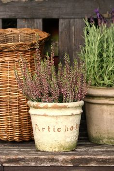 DIY aged terracotta pot.  Paint over and etch in words.  Sand/chip off some of the paint for a rustic look.