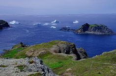 Twillingate, Newfoundland is one of the best places in the world to see icebergs. Several coastal trails offer excellent iceberg viewing from May to July. The Places Youll Go, Cool Places To Visit, Places To Travel, Places To Go, Travel Destinations, Newfoundland Canada, Newfoundland And Labrador, Gros Morne, Canada Landscape