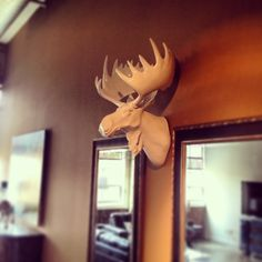 The Bachelor, Sean Lowe, styles his pad with Z Gallerie's large fauxidermy moose head.