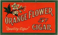 Orange Flower – Orange Flower Cigar