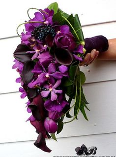 Image detail for -Black and purple wedding bouquets pictures 2