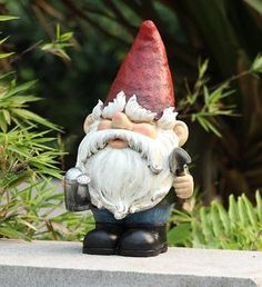 A tropical garden gnome is a special variation of the being used to decorate gardens or backyards. They vary a lot from the regular gnomes.