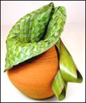 Green flax can be just as decorative as colooured variegated flax Flax Weaving, Basket Weaving, Kiwiana, Found Art, Tablescapes, Floral Arrangements, Bean Bag Chair, Palm Fronds, Palms