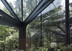 Greenhouse of steel trees in Switzerland by Buehrer Wuest Architekten.