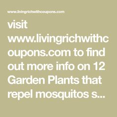 visit www.livingrichwithcoupons.com to find out more info on 12 Garden Plants that repel mosquitos so you can enjoy being outside